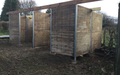 Box pour chevaux en panneaux douglas