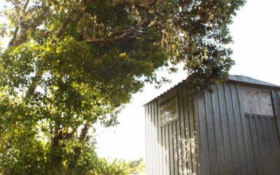 Choisir la tôle acier pour votre abri de jardin ?